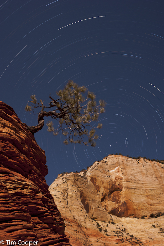 LoneTree_Star_Trails